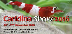 slovak-caridina-show-2016-eng-banner2