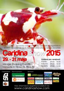 Slovak Caridina Show 8